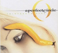 A Perfect Circle Thirteenth Step.jpg