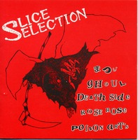 slice selection.jpg